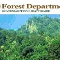 Chhattisgarh Forest Department Recruitment 2016 | 02 Assistant Draftsman Posts Last Date 24th September 2016