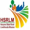 HSRLM Recruitment 2018 – 219 DEO, Accountant & Other Vacancies